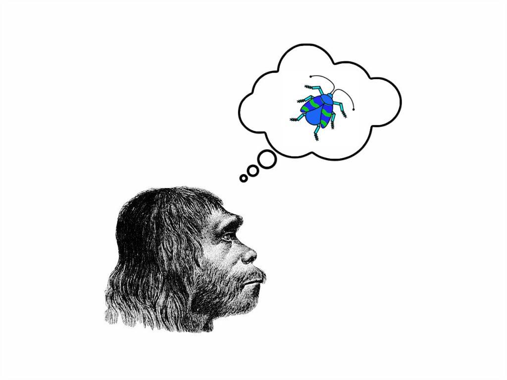 Das Folgenbild zeigt die historische Zeichnung eines Neanderthalerkopfes im Profil. Schräg darüber befindet sich eine Denkblase mit dem museumbug-Logo darin.