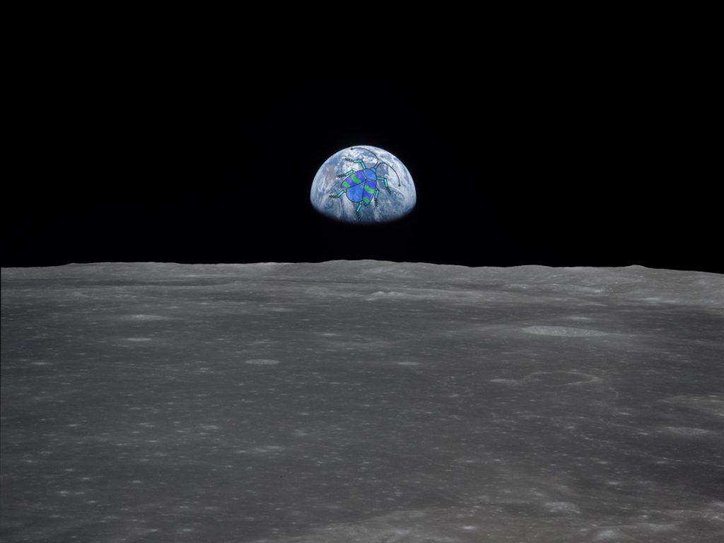 Das Foto der 24. Folge des museumbug-Podcasts. Im Bildvordergrund die große graue Oberfläche des Mondes. Im Bildhintergrund die Erde als kleine Kugel. Darauf der Käfer, das Logo des museumbug-Podcast.